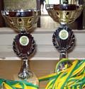 Pokale PSG Darmstadt