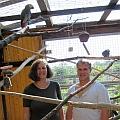 Neues Heim für Papageien: Sonja Fuchs (HSE) und Sascha Keller (Keller-Ranch) freuen sich über die Spende.
