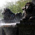 Löwenbrunnen Darmstadt