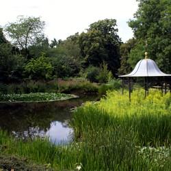Teich im Bessunger Prinz-Emil-Garten