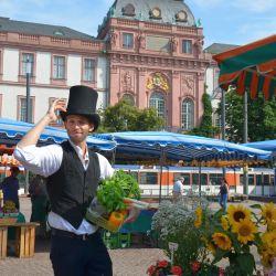 Datterichs Wochenmarkt / Bild: Darmstadt Marketing GmbH, Simone Sündermann