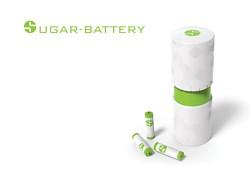 Zucker-Batterie / Bild: Hochschule Darmstadt