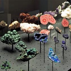 Mineralien - Bild: Hessisches Landesmuseum Darmstadt