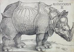 Bild: Albrecht Dürer Rhinocerus (Das Rhinozeros), 1515 Holzschnitt, ©Hessisches Landesmuseum Darmstadt, Foto: Wolfgang Fuhrmannek