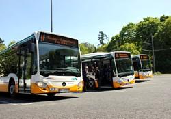 Evo-Bus - Bild_ HEAG mobiBus