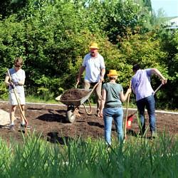 Wildblumenwiese wird angelegt - Bild: ENTEGA AG