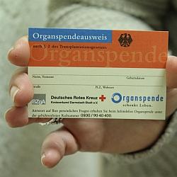 Organspendeausweis / Bild: DRK Darmstadt