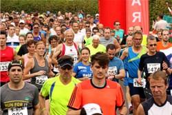 Bild: Marathonteam Koberstädter-Waldmarathon Egelsbach